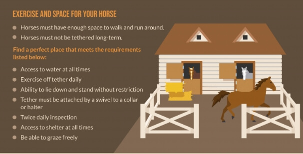infographics-img6